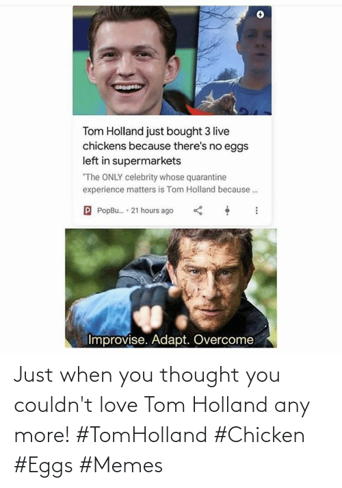 Chicken: Just when you thought you couldn't love Tom Holland any more! #TomHolland #Chicken #Eggs #Memes