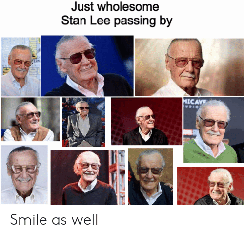 Stan, Stan Lee, and Smile: Just wholesome  Stan Lee passing by  CAVE Smile as well