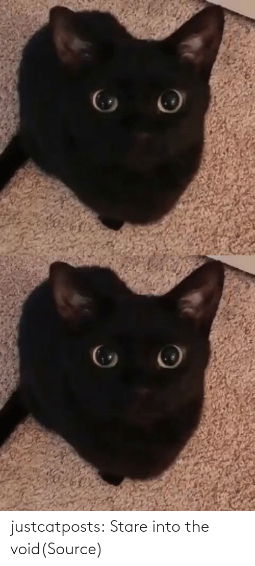 void: justcatposts:  Stare into the void(Source)