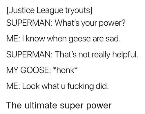 super power: [Justice League tryouts]  SUPERMAN: What's your power?  ME: I know when geese are sad  SUPERMAN: That's not really helpful  MY GOOSE: *honk*  ME: Look what u fucking did. The ultimate super power