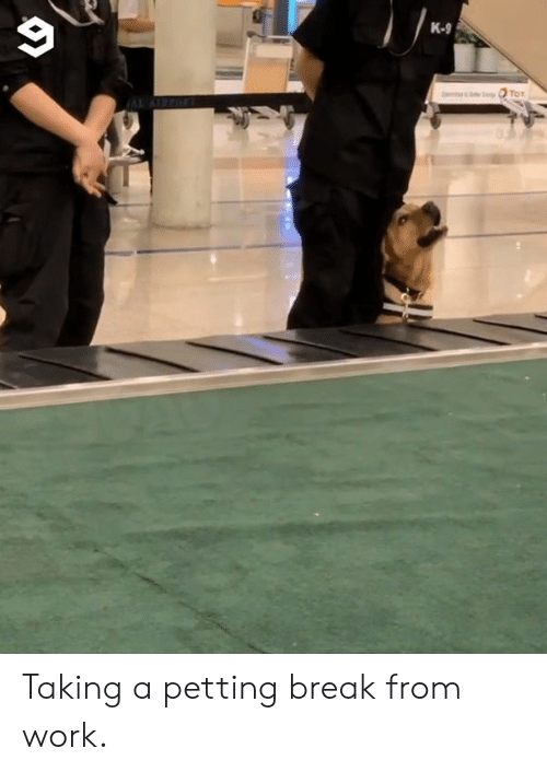 k-9: K-9 Taking a petting break from work.