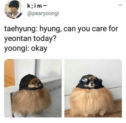 Okay, Today, and Can: k;im-  @pearyoongi  taehyung: hyung, can you care for  yeontan today?  yoongi: okay