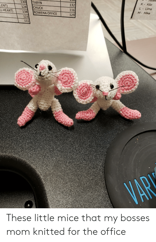 Taryn: K- Kilo  130  TARYN  132  ENT)  LL-HEART)  L-Lima  128  CHUCK  116  M- Mike  138  ROWENA OFFICE  129  123  111  VAR These little mice that my bosses mom knitted for the office