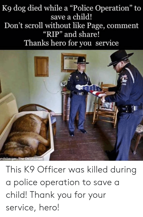 """Memes, Police, and Thank You: K9 dog died while a """"Police Operation"""" to  save a child!  Don't scroll without like Page, comment  """"RIP"""" and share!  Thanks hero for you service  05  鷢  ndsberger This K9 Officer was killed during a police operation to save a child!    Thank you for your service, hero!"""