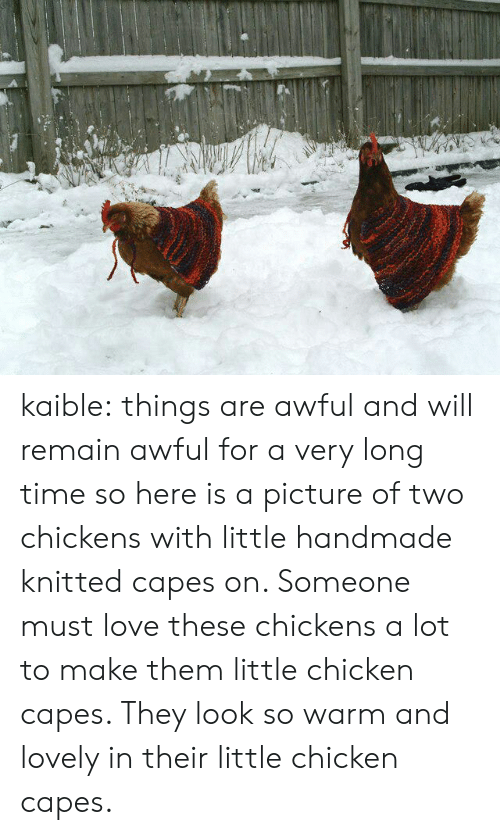 Handmade: kaible:  things are awful and will remain awful for a very long time so here is a picture of two chickens with little handmade knitted capes on. Someone must love these chickens a lot to make them little chicken capes. They look so warm and lovely in their little chicken capes.