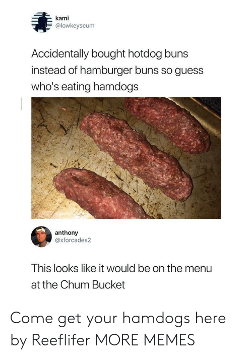On The Menu: kami  @lowkeyscum  Accidentally bought hotdog buns  instead of hamburger buns so guess  who's eating hamdogs  anthony  @xforcades2  This looks like it would be on the menu  at the Chum Bucket Come get your hamdogs here by Reeflifer MORE MEMES
