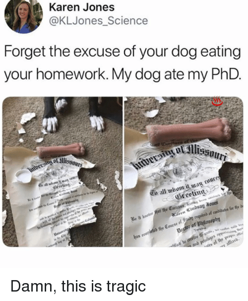 Memes, Science, and Homework: Karen Jones  @KLJones Science  Forget the excuse of your dog eating  your homework. My dog ate my PhD  Cu all whom it  Greeting :  r of Philosoph Damn, this is tragic