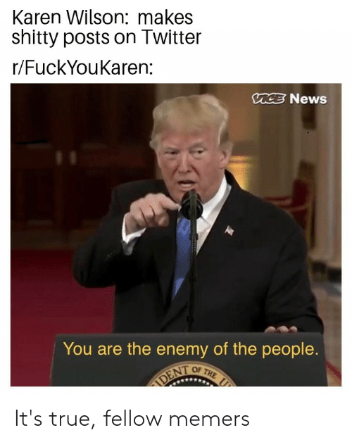 News, Reddit, and True: Karen Wilson: makes  shitty posts on Twitter  r/FuckYouKaren:  MCE News  You are the enemy of the people.  OF THE  DENT It's true, fellow memers