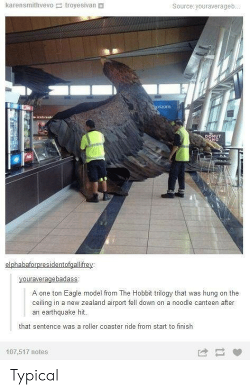 troyesivan: karensmithvevo troyesivan  Source: youraverageb...  cprizons  icebreak  DONUT  NG  elphabaforpresidentofgallifrey  youraveragebadass  A one ton Eagle model from The Hobbit trilogy that was hung on the  ceiling in a new zealand airport fell down on a noodle canteen after  an earthquake hit.  that sentence was a roller coaster ride from start to finish  107,517 notes Typical