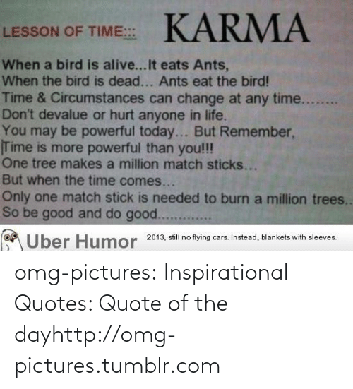 Quote Of The Day: KARMA  LESSON OF TIME::  When a bird is alive...It eats Ants,  When the bird is dead... Ants eat the bird!  Time & Circumstances can change at any time....  Don't devalue or hurt anyone in life.  You may be powerful today... But Remember,  Time is more powerful than you!!!  One tree makes a million match sticks...  But when the time comes...  Only one match stick is needed to burn a million trees..  So be good and do good.....  Uber Humor 2013, still no flying cars. Instead, blankets with sleeves. omg-pictures:  Inspirational Quotes: Quote of the dayhttp://omg-pictures.tumblr.com