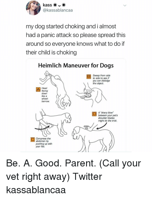 """Compress: @kassablancaa  my dog started choking and i almost  had a panic attack so please spread this  around so everyone knows what to do if  their child is choking  Heimlich Maneuver for Dogs  Sweep from side  to side to see if  you can dislodge  the object  Head  facing  down  like a  wheel  barrow  A """"sharp blow  between your pet's  shoulder blades  might do the trick.  Compress the  abdomen by  pushing up with  your fist Be. A. Good. Parent. (Call your vet right away) Twitter kassablancaa"""