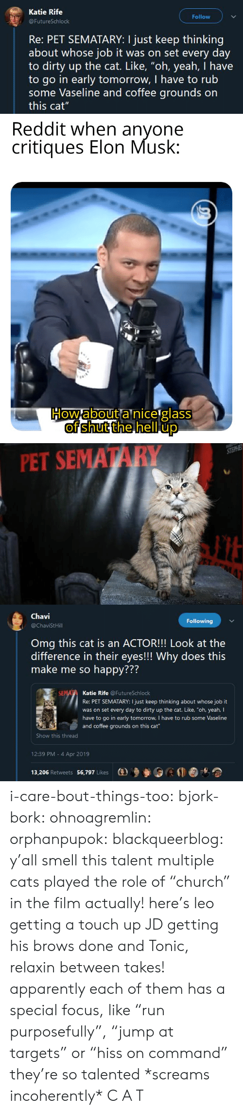 "Múltiple: Katie Rife  Follow  FutureSchlock  Re: PET SEMATARY: I just keep thinking  about whose job it was on set every day  to dirty up the cat. Like, ""oh, yeah, I have  to go in early tomorrow, I have to rub  some Vaseline and coffee grounds on  this cat""   PET SEMATARY   Chavi  @ChaviStHill  Following  Omg this cat is an ACTOR!!! Look at the  difference in their eyes!!! Why does this  make me so happy???  772  Katie Rife @FutureSchlock  Re: PET SEMATARY: I just keep thinking about whose job it  was on set every day to dirty up the cat. Like, ""oh, yeah, I  have to go in early tomorrow, I have to rub some Vaseline  and coffee grounds on this cat  Show this thread  12:39 PM - 4 Apr 2019  13,206 Retweets 56,797 Likes  (e)乡參0 i-care-bout-things-too:  bjork-bork:  ohnoagremlin:  orphanpupok:  blackqueerblog: y'all smell this talent  multiple cats played the role of ""church"" in the film actually! here's leo getting a touch up JD getting his brows done and Tonic, relaxin between takes!   apparently each of them has a special focus, like ""run purposefully"", ""jump at targets"" or ""hiss on command"" they're so talented     *screams incoherently* C A T"
