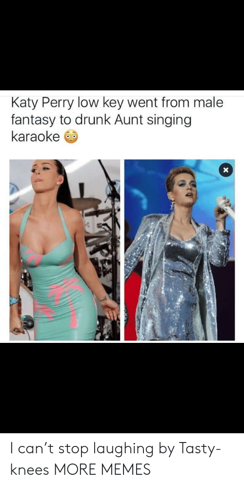 Dank, Drunk, and Katy Perry: Katy Perry low key went from male  fantasy to drunk Aunt singing  karaoke I can't stop laughing by Tasty-knees MORE MEMES