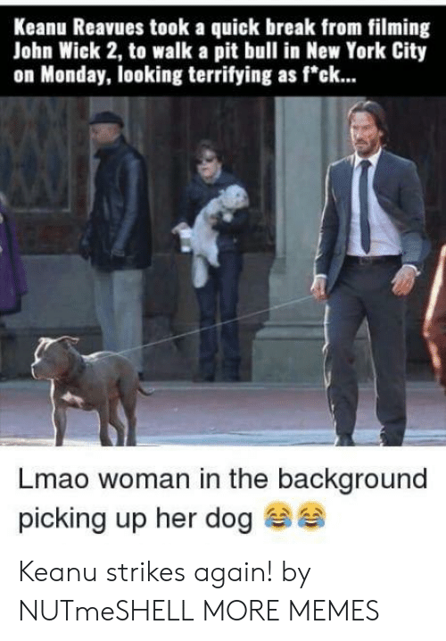 "New York City: Keanu Reavues took a quick break from filming  John Wick 2, to walk a pit bull in New York City  on Monday, looking terrifying as f""ck...  Lmao woman in the background  picking up her dog Keanu strikes again! by NUTmeSHELL MORE MEMES"