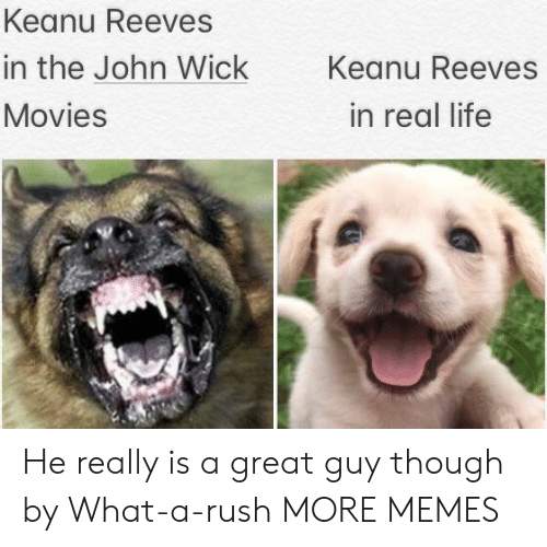 Dank, John Wick, and Life: Keanu Reeves  in the John Wick  Keanu Reeves  Movies  in real life He really is a great guy though by What-a-rush MORE MEMES