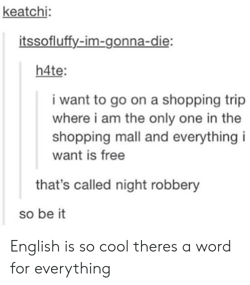 Im Gonna Die: keatchi  itssofluffy-im-gonna-die  h4te  i want to go on a shopping trip  where i am the only one in the  shopping mall and everything i  want is free  that's called night robbery  so be it English is so cool theres a word for everything