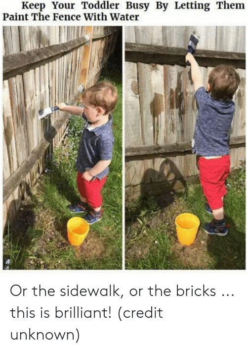 Dank, Paint, and Water: Keep Your Toddler Busy By Letting Them  Paint The Fence With Water Or the sidewalk, or the bricks ... this is brilliant!  (credit unknown)