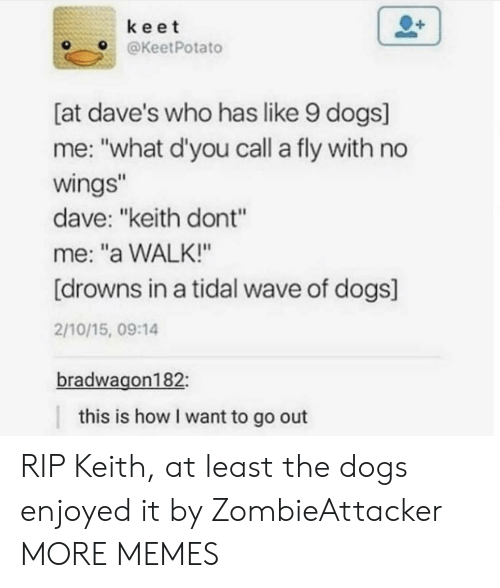"Dank, Dogs, and Memes: keet  OKeetPotato  [at dave's who has like 9 dogs]  me: ""what d'you call a fly with no  wings  dave: ""keith dont""  me: ""a WALK!""  [drowns in a tidal wave of dogs]  2/10/15, 09:14  bradwagon182  this is how I want to go out RIP Keith, at least the dogs enjoyed it by ZombieAttacker MORE MEMES"