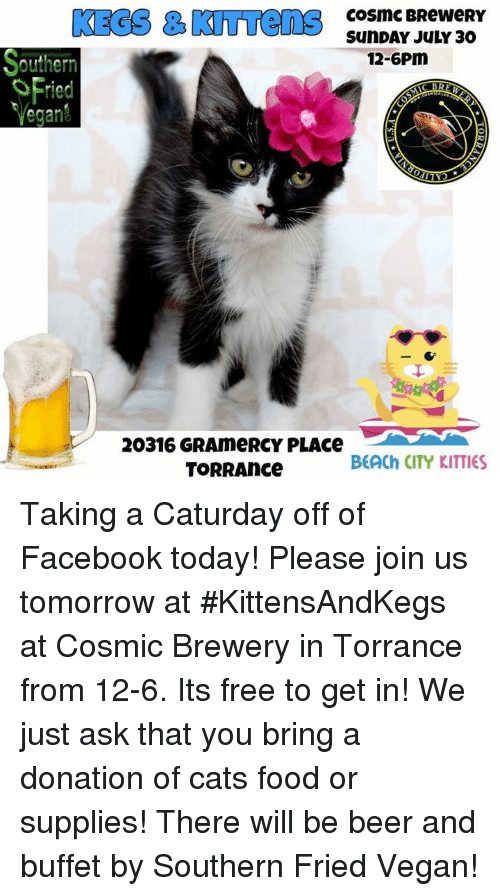 Beer Cats And Caturday KEGS KITTens CosMC BReweRY SunDAY JULY 30 12