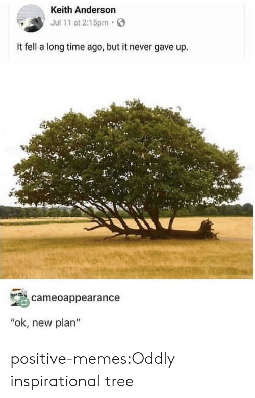 "Long Time Ago: Keith Anderson  Jul 11 at 2:15pm  It fell a long time ago, but it never gave up.  cameoappearance  ""ok, new plan"" positive-memes:Oddly inspirational tree"