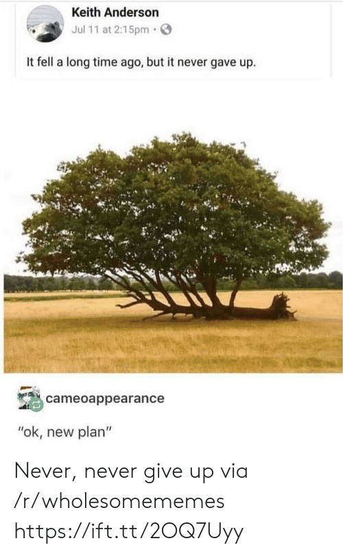 "never give up: Keith Anderson  Jul 11 at 2:15pm  It fell a long time ago, but it never gave up  cameoappearance  ""ok, new plan"" Never, never give up via /r/wholesomememes https://ift.tt/2OQ7Uyy"