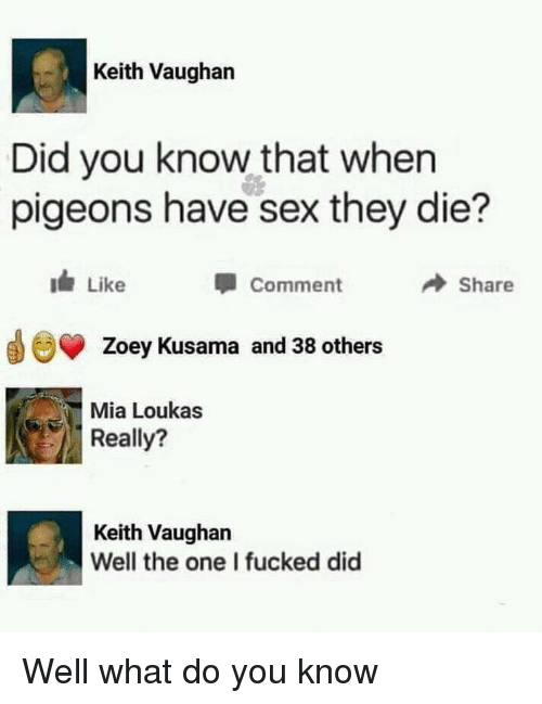 zoey: Keith Vaughan  Did you know that when  pigeons have sex they die?  Comment  Share  Zoey Kusama and 38 others  Mia Loukas  Really?  Keith Vaughan  Well the one I fucked did Well what do you know