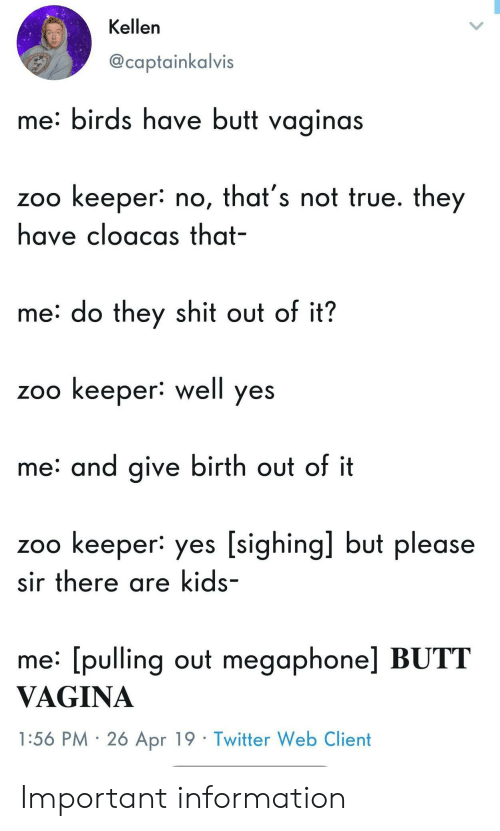 Kellen: Kellen  @captainkalvis  me: birds have butt vaginas  zoo keeper: no, that's not true. they  have cloacas that-  me: do they shit out of it?  zoo keeper: well yes  me: and give birth out of it  zoo keeper: yes [sighing] but please  sir there are kids-  me: [pulling out megaphone] BUTT  VAGINA  1:56 PM 2ó Apr 19 Twitter Web Client Important information