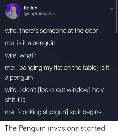 Kellen: Kellen  @captainkalvis  wife: there's someone at the door  me: is it a penguin  wife: what?  me: [banging my fist on the table] is it  a penguin  wife: i don't [looks out window] holy  shit it is  me: [cocking shotgun] so it begins. The Penguin invasions started