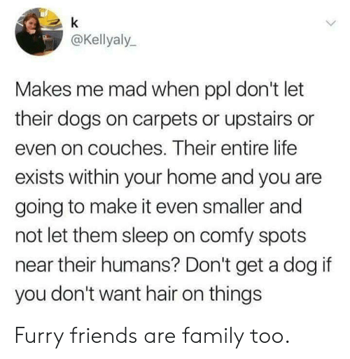Dank, Dogs, and Family: @Kellyaly  Makes me mad when ppl don't let  their dogs on carpets or upstairs or  even on couches. Their entire life  exists within your home and you are  going to make it even smaller and  not let them sleep on comfy spots  near their humans? Don't get a dog if  you don't want hair on things Furry friends are family too.