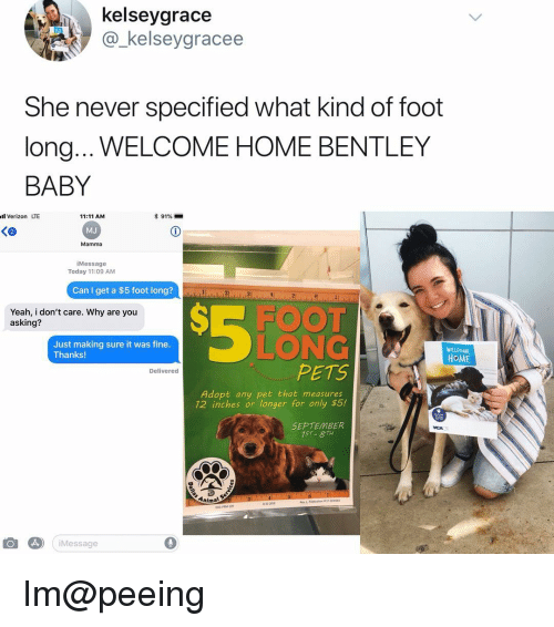 Bentley: kelseygrace  @_kelseygracee  She never specified what kind of foot  long... WELCOME HOME BENTLEY  BABY  l Verizon LTE  11:11 AM  MJ  Mamma  * 91%-  iMessage  Today 11:09 AM  Can I get a $5 foot long? d  Yeah, i don't care. Why are you  asking?  SE FOOT  LONG  PETS  Just making sure it was fine.  Thanks!  WELOME  HoME  Deliverec  Adopt any pet that measures  12 inches or longer for only $5!  SEPTEMBER  75T 8TH  Animal  iMessage Im@peeing