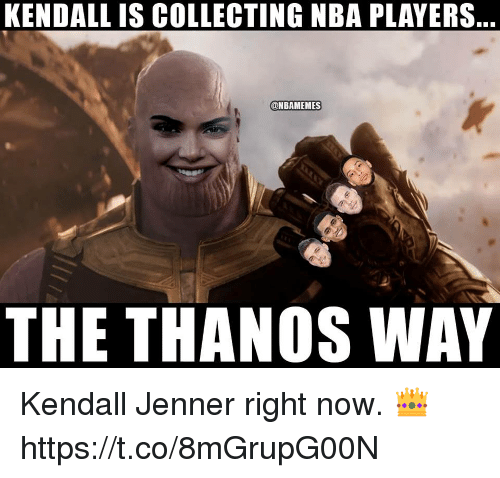 Kendall Jenner: KENDALL IS COLLECTING NBA PLAYERS  ONBAMEMES  THE THANOS WAY Kendall Jenner right now. 👑 https://t.co/8mGrupG00N