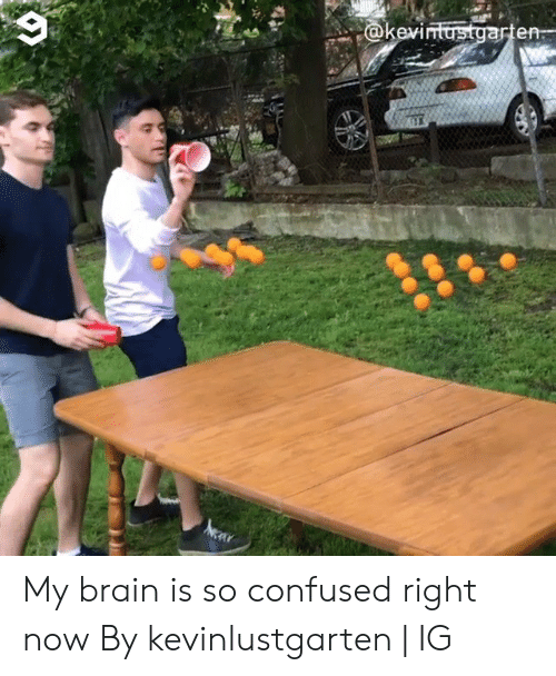 Confused, Dank, and Brain: @kev  arten- My brain is so confused right now  By kevinlustgarten | IG