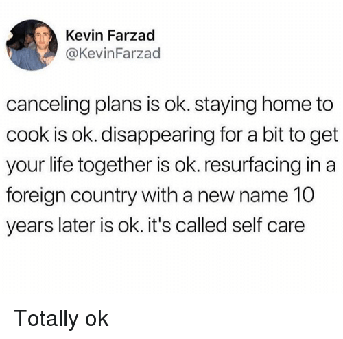 Dank, Life, and Home: Kevin Farzad  @KevinFarzad  canceling plans is ok. staying home to  cook is ok. disappearing for a bit to get  your life together is ok. resurfacing in a  foreign country with a new name 10  years later is ok. it's called self care Totally ok