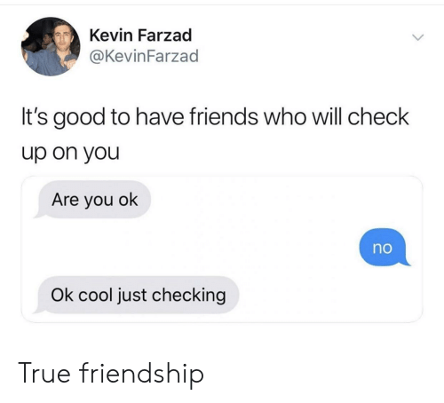 Friends, True, and Cool: Kevin Farzad  @KevinFarzad  It's good to have friends who will check  up on you  Are you ok  no  Ok cool just checking True friendship