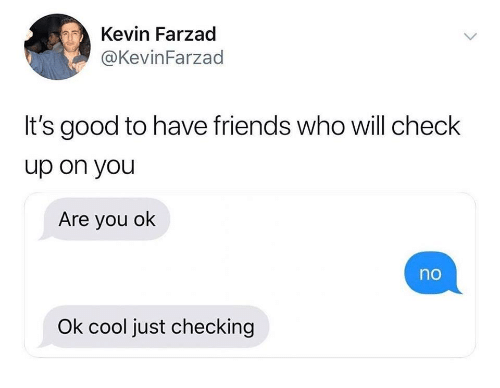 Friends, Cool, and Good: Kevin Farzad  @KevinFarzad  It's good to have friends who will check  up on you  Are you ok  no  Ok cool just checking