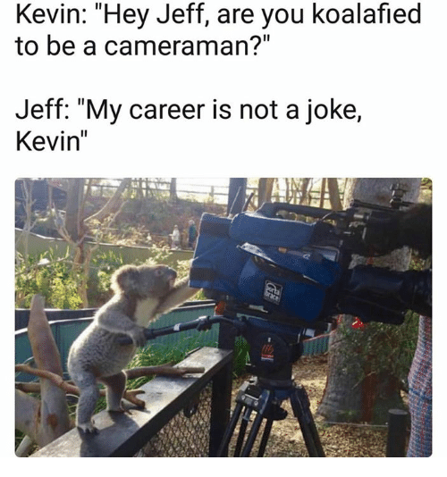 """jeffe: Kevin: Hey Jeff, are you koalafied  to be a cameraman?""""  Jeff: """"My career is not a joke,  Kevin"""""""
