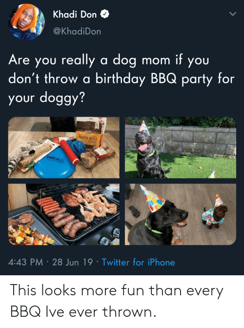doggy: Khadi Don  @KhadiDon  Are you really a dog  don't throw a birthday BBQ party for  your doggy?  mom it you  EY  OWER BITES  petco  4:43 PM 28 Jun 19 Twitter for iPhone This looks more fun than every BBQ Ive ever thrown.