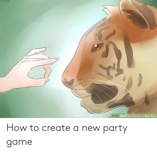 Bad, Party, and Game: ki How to Attract a Bad Boy How to create a new party game