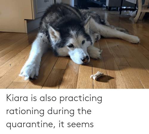practicing: Kiara is also practicing rationing during the quarantine, it seems