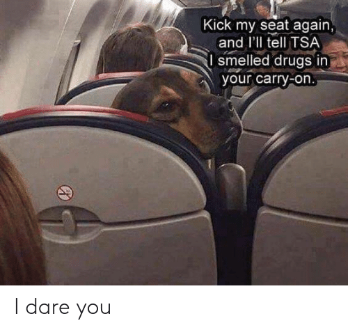 Drugs, Tsa, and Dare: Kick my seat again  and I'll tell TSA  smelled drugs in  your carry-on I dare you