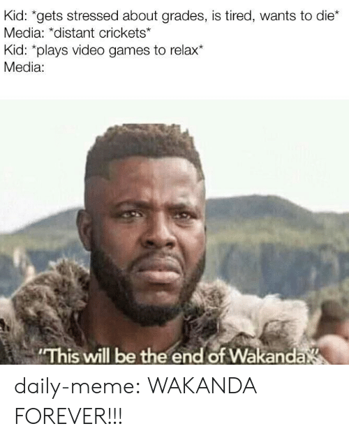 Meme, Tumblr, and Video Games: Kid: *gets stressed about grades, is tired, wants to die*  Media: *distant crickets*  Kid: *plays video games to relax*  Media:  This will be the end of Wakanda daily-meme:  WAKANDA FOREVER!!!