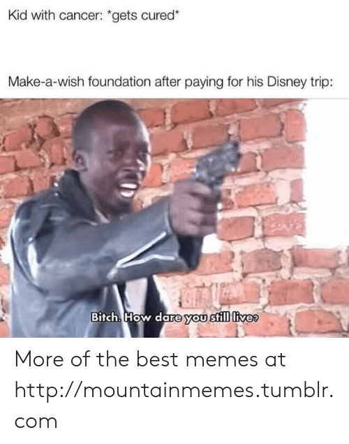 "Disney, Memes, and Tumblr: Kid with cancer: ""gets cured*  Make-a-wish foundation after paying for his Disney trip:  Bitch. How dare you still livee More of the best memes at http://mountainmemes.tumblr.com"
