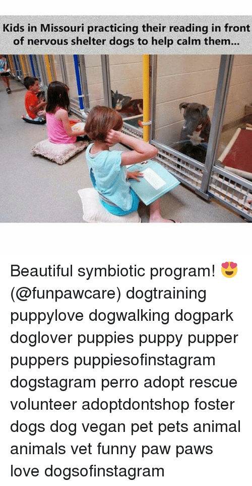 Pawing: Kids in Missouri practicing their reading in front  of nervous shelter dogs to help calm them... Beautiful symbiotic program! 😍 (@funpawcare) dogtraining puppylove dogwalking dogpark doglover puppies puppy pupper puppers puppiesofinstagram dogstagram perro adopt rescue volunteer adoptdontshop foster dogs dog vegan pet pets animal animals vet funny paw paws love dogsofinstagram