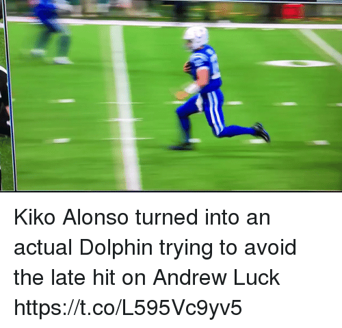 Andrew Luck, Nfl, and Dolphin: Kiko Alonso turned into an actual Dolphin trying to avoid the late hit on Andrew Luck   https://t.co/L595Vc9yv5