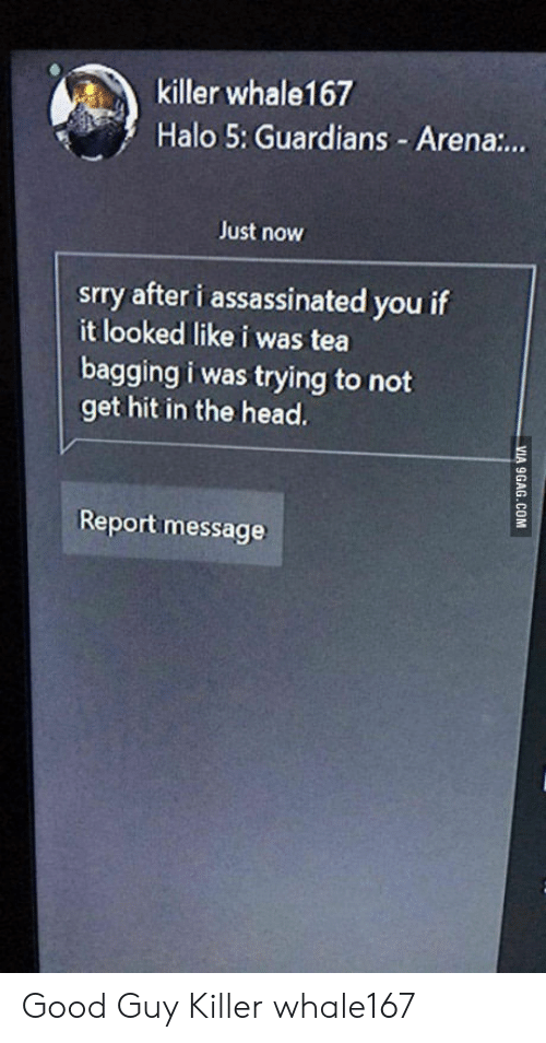 tea bagging: killer whale167  Halo 5: Guardians - Arena:..  Just now  srry after i assassinated you if  it looked like i was tea  bagging i was trying to not  get hit in the head.  Report message Good Guy Killer whale167
