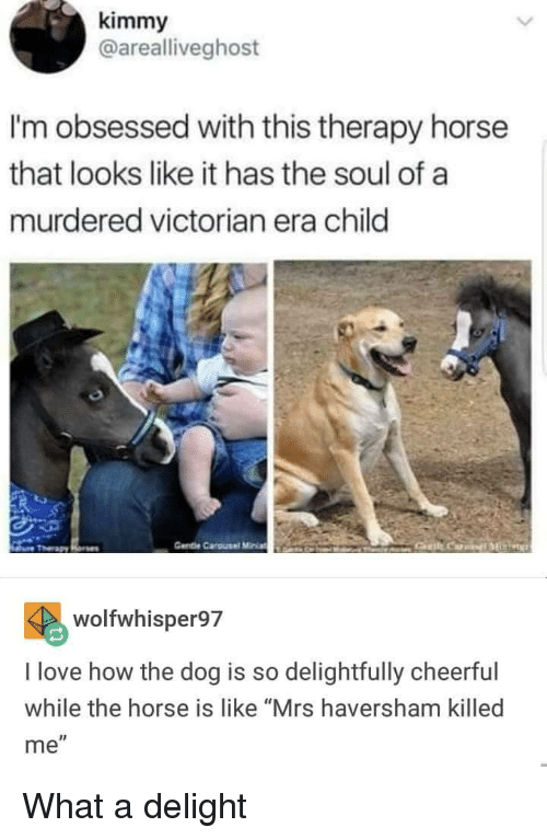 "Love, Horse, and Victorian Era: kimmy  @arealliveghost  I'm obsessed with this therapy horse  that looks like it has the soul of a  murdered victorian era child  Gente Carousel MiniaEANO  wolfwhisper97  I love how the dog is so delightfully cheerful  while the horse is like ""Mrs haversham killed  me"" What a delight"
