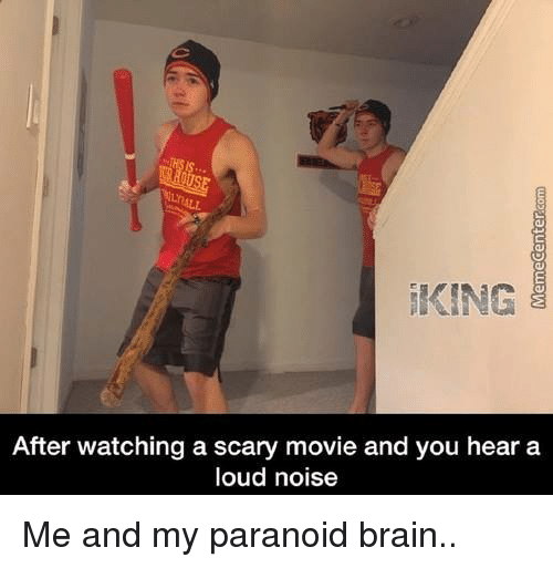 Brains, Memes, and Brain: KING  After watching a scary movie and you hear a  loud noise Me and my paranoid brain..