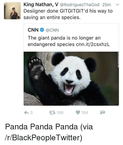 giant panda: King Nathan, V @RodriguezThaGod 25m v  Desiigner done GITGITGIT'd his way to  saving an entire species.  CNN@CNN  The giant panda is no longer an  endangered species cnn.it/2csxhzL  168164 <p>Panda Panda Panda (via /r/BlackPeopleTwitter)</p>