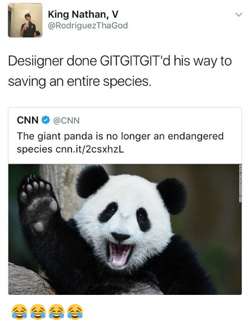 giant panda: King Nathan, V  @RodriguezThaGod  Desiigner done GITGITGIT'd his way to  saving an entire species.  CNNネ@CNN  The giant panda is no longer an endangered  species cnn.it/2csxhzL 😂😂😂😂