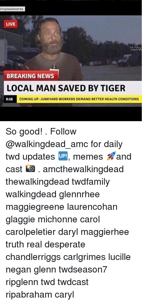 Carole: kingdeadscenes  LIVE  BREAKING NEWS  LOCAL MAN SAVED BY TIGER  0:16 COM  COMING UP:JUNKYARD WORKERS DEMAND BETTER HEALTH CONDITIONS So good! . Follow @walkingdead_amc for daily twd updates 🆙, memes 🚀and cast 📸 . amcthewalkingdead thewalkingdead twdfamily walkingdead glennrhee maggiegreene laurencohan glaggie michonne carol carolpeletier daryl maggierhee truth real desperate chandlerriggs carlgrimes lucille negan glenn twdseason7 ripglenn twd twdcast ripabraham caryl